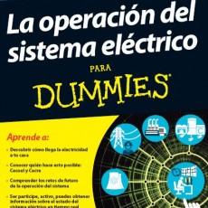 El sector eléctrico para «torpes»
