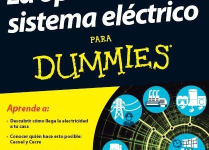 """El sector eléctrico para """"torpes"""""""